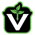 valutivityvlogo1color tiny